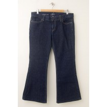 Ann Taylor Loft Modern Flare Jeans Women's 12P - Petite (hemmed)