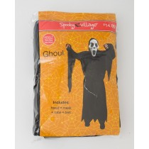 Spooky Village Halloween Ghoul Costume Adult