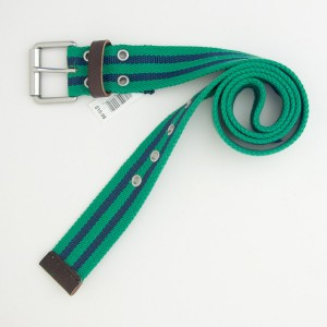 NEW Gap Men's Double Striped Webbing Belt in Lawn Green