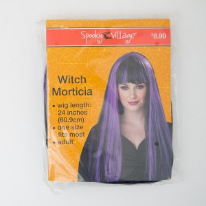 Spooky Village Witch Morticia Adult Wig in Black with Purple